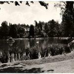 Czarno-biała pocztówka z Radomska – park w 1965 roku
