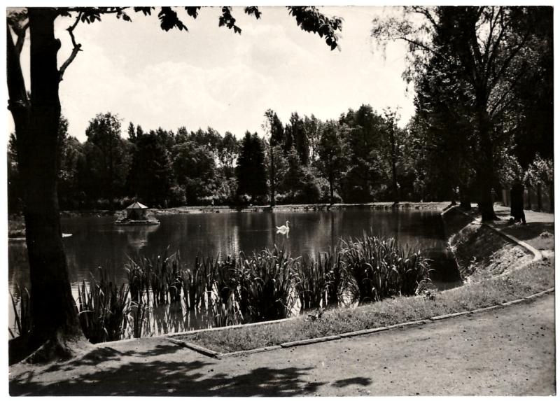 park_radomsko_czarno_biala_pocztowka_1965