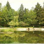 Pocztówka z Radomska – zazieleniony park (1979 rok)