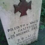 Pomnik partyzantów w Jasieniu