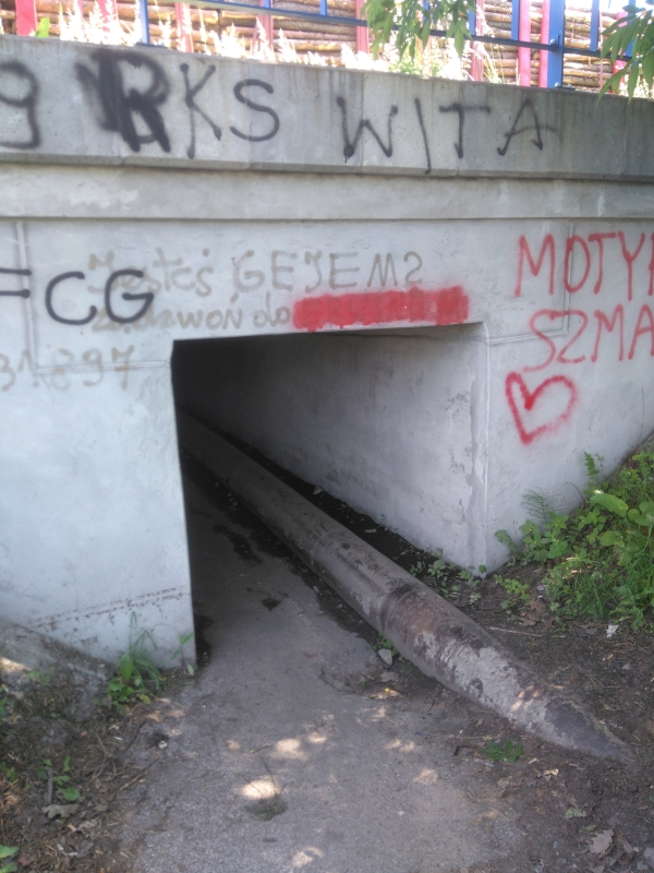 gomunice_tunel_pod_torami_kolo_ug_4