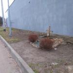 Mały krzyż przy ulicy Konarskiego – miejsce tragedii z 2004 roku