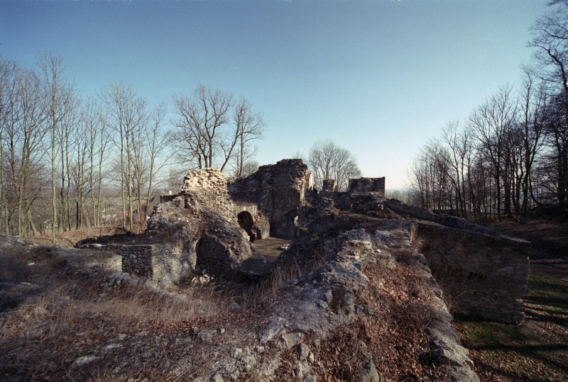 ruiny_zamku_w_bakowej_gorze