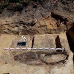 IPN bada szczątki ludzkie w mogile ze Słostowic