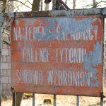 Składnica drewna w Bloku Dobryszyce